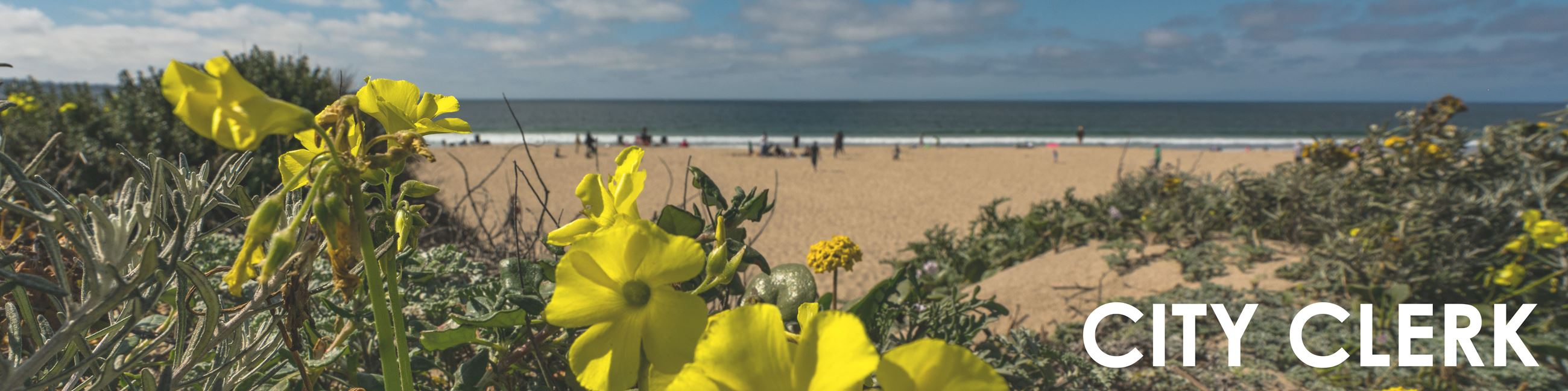 """City Clerk"" image of beach and yellow flowers"